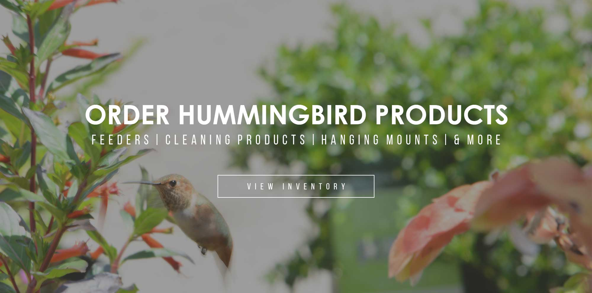 Hummingbird Products | Feeders, Cleaning Products, Hanging Mounts
