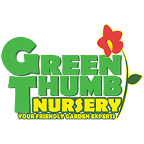 Green Thumb Nursery Canoga Park