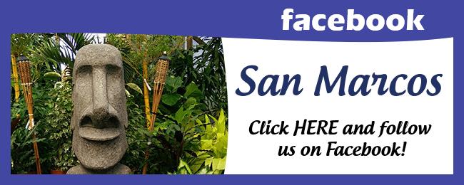 Website Social Media Page San Marcos