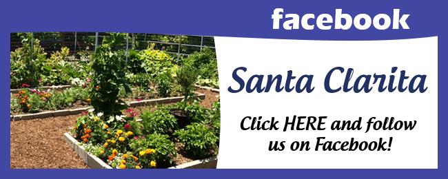 Website Social Media Page Santa Clarita