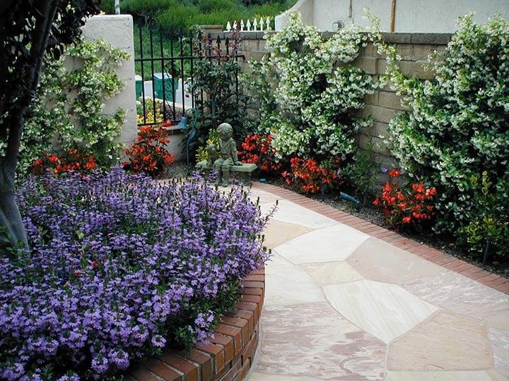 free landscape design, drought tolerant landscaping, professional landscape designers