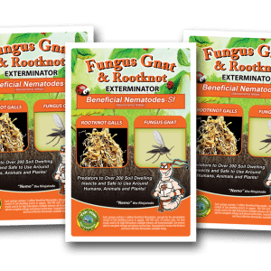 SC Beneficial Nematodes - Natural Flea Exterminator