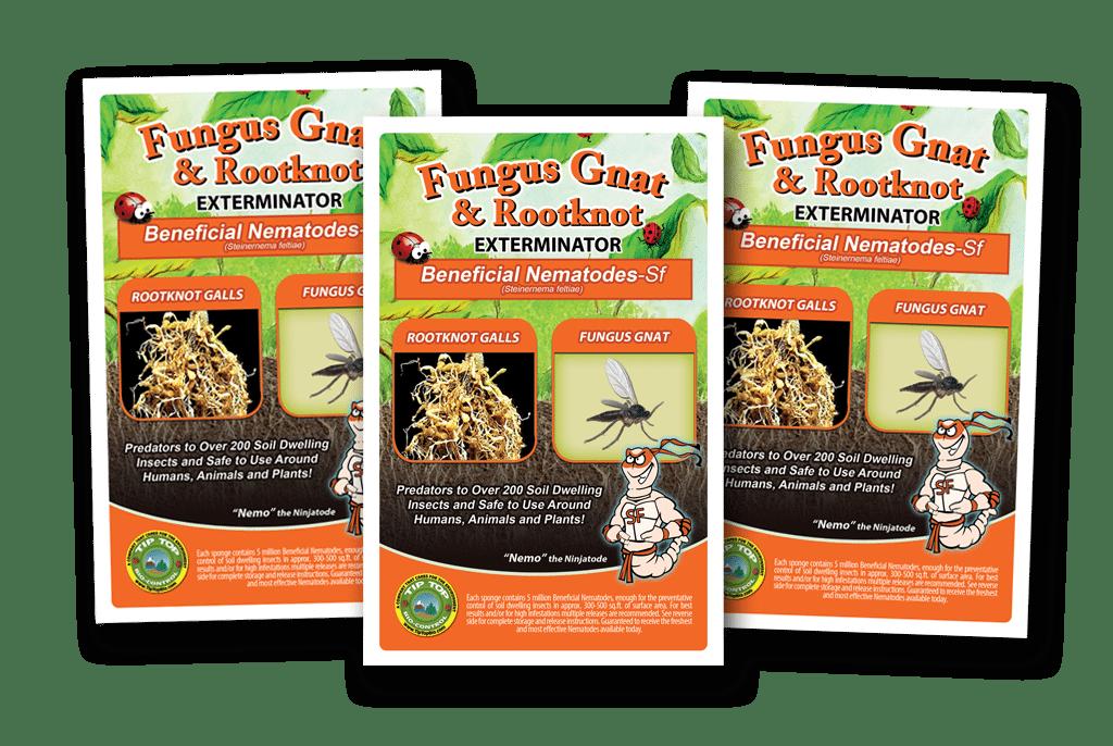 Beneficial Nematodes Sf Fungus Gnat Control Green