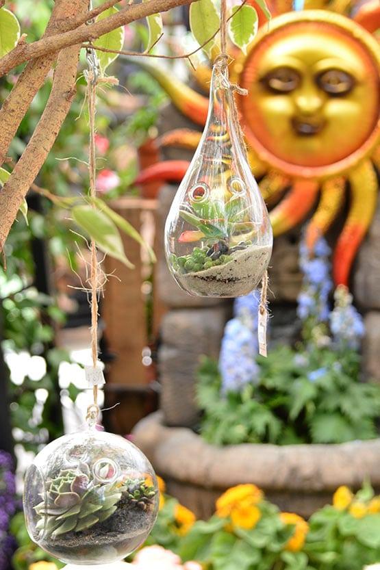 Planting Planters Green Thumb Nursery