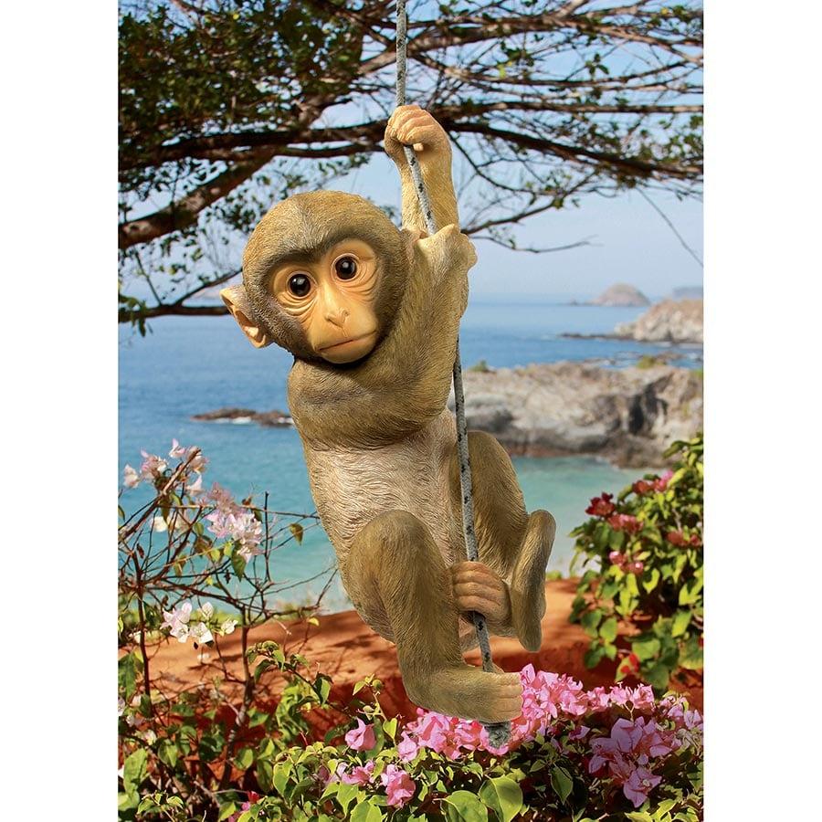 Chico The Chimpanzee Hanging Monkey Green Thumb Nursery