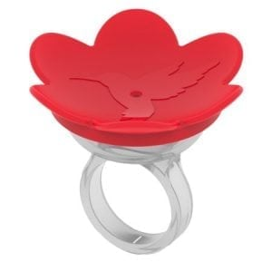 the hummingbird ring