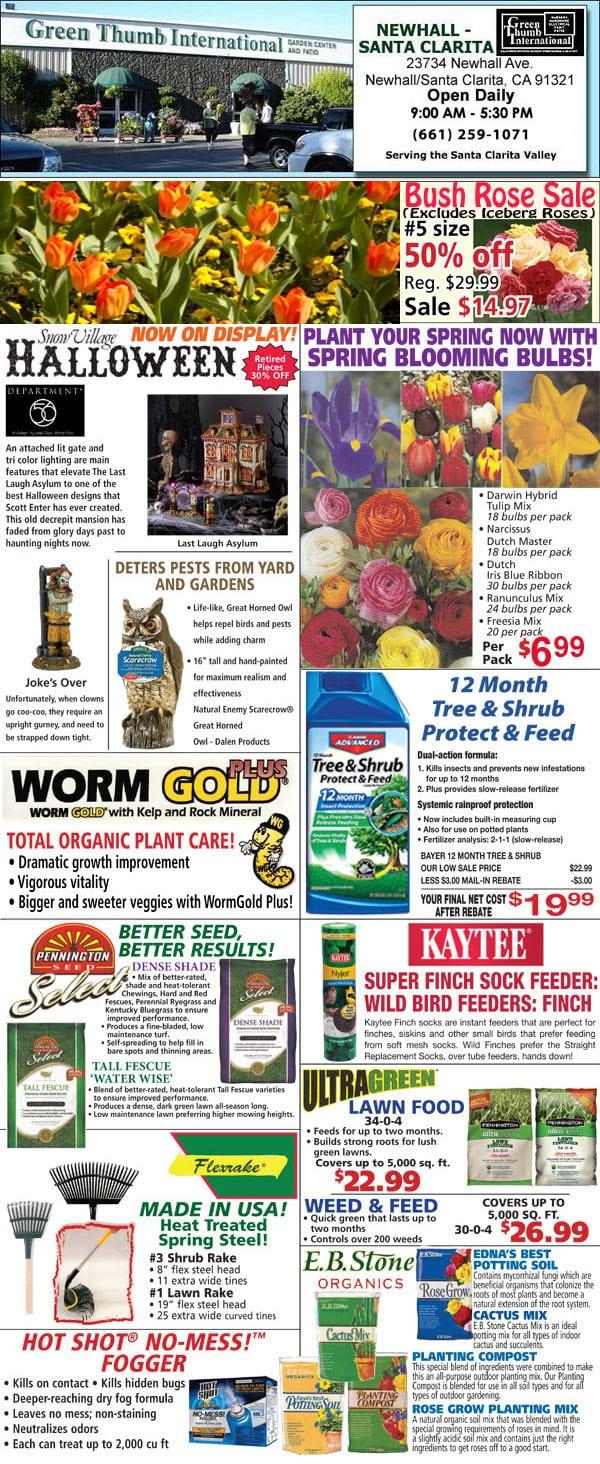 9 06 18 Ad For Newhall Santa Clarita Green Thumb Nursery