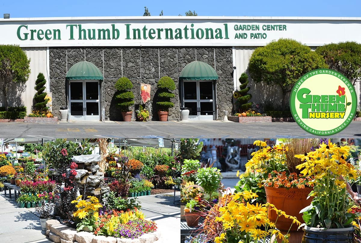 Green Thumb Nursery Santa Clarita