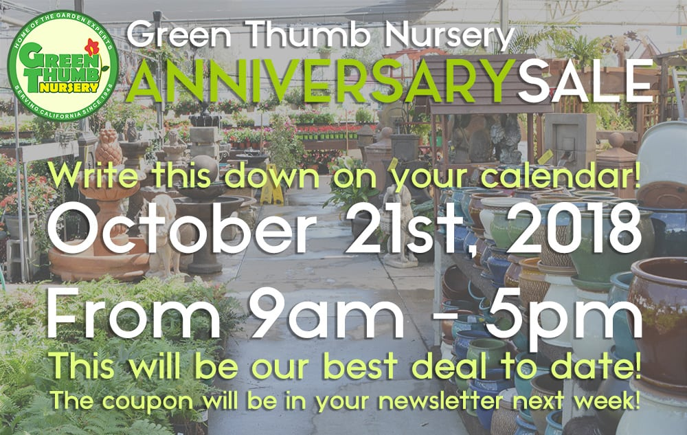Green Thumb Nursery 2018 Anniversary