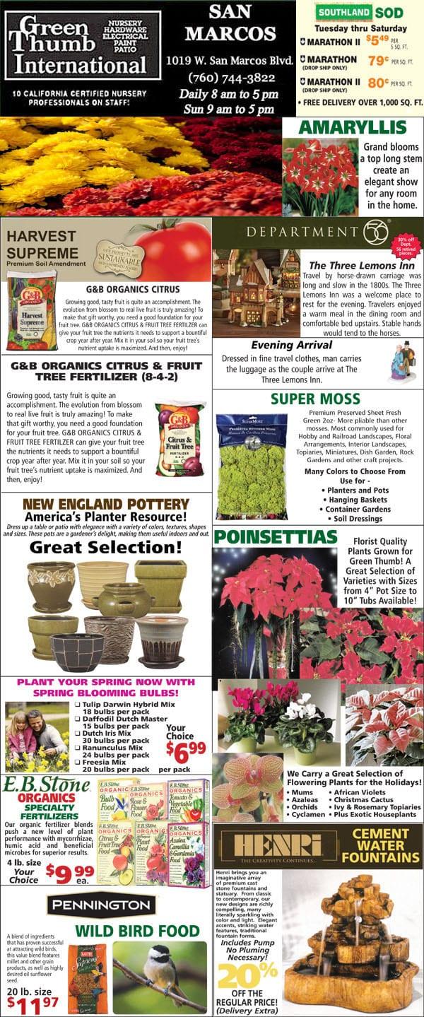 11-15-18 Ad for San Marcos - Green Thumb Nursery