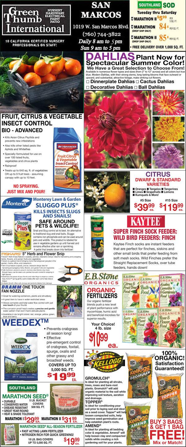 2 20 20 Ad For San Marcos Green Thumb Nursery