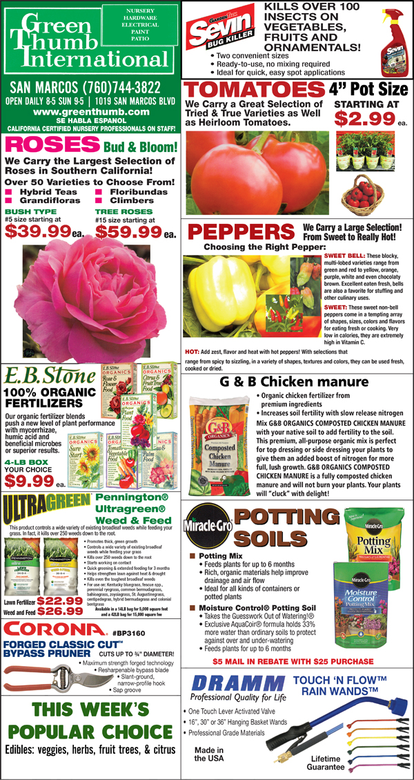 4 09 20 Ad For San Marcos Green Thumb Nursery