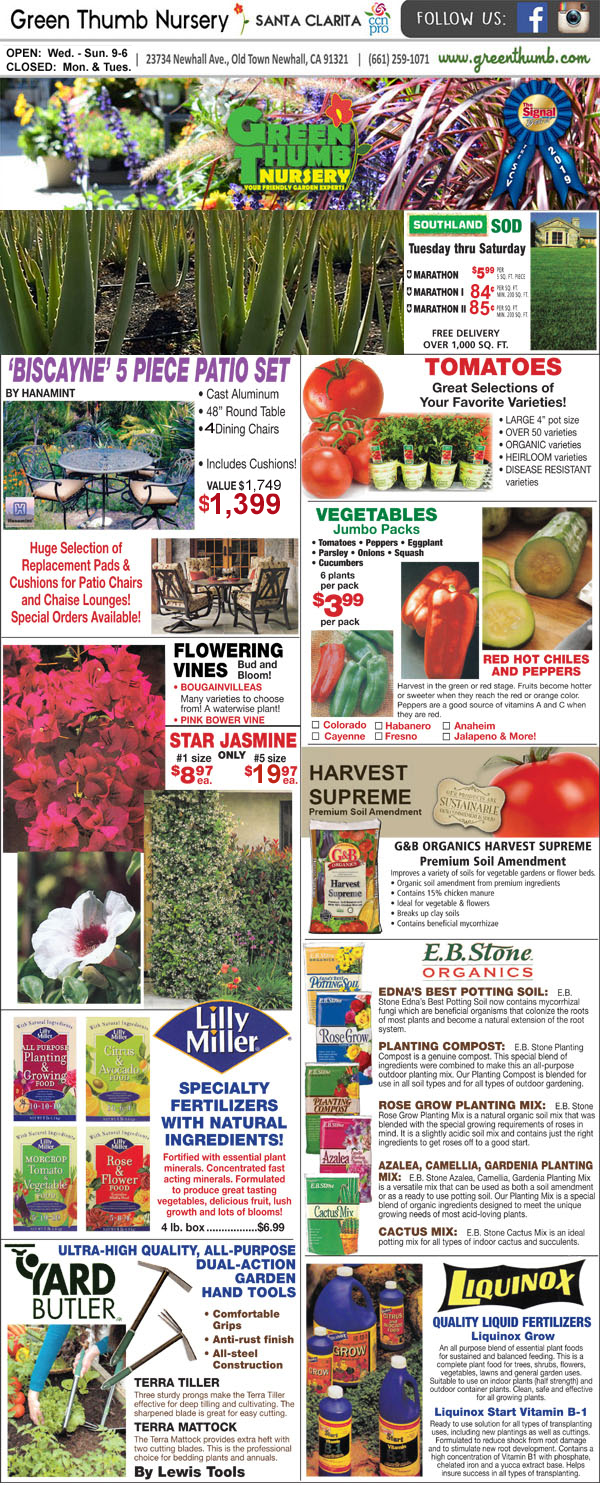 4 23 20 Ad For Newhall Santa Clarita Green Thumb Nursery