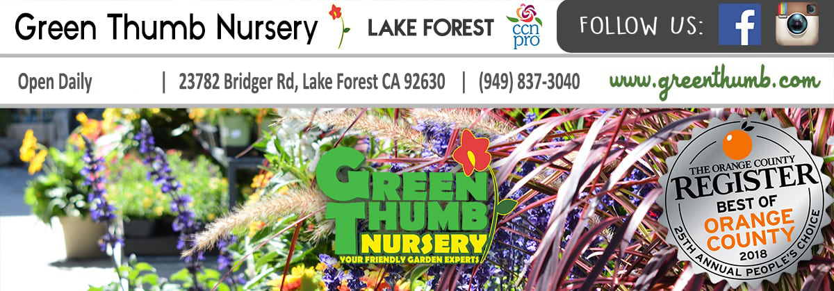 Green Thumb Nursery Lake Forest Orange